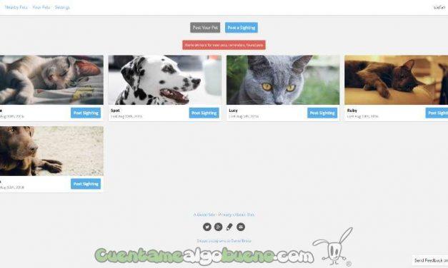 Estudiantes de bachillerato crean una web para encontrar mascotas perdidas