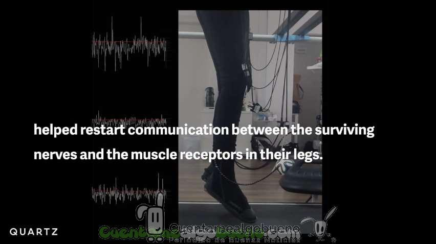 Revolucionario método para que personas parapléjicas recuperen la movilidad