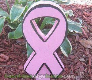 Un lazo rosa, símbolo del cáncer de mama. Fotografía de sunsets_for_you.