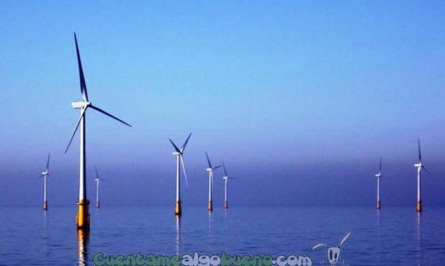 California construirá el mayor parque eólico-marino del mundo