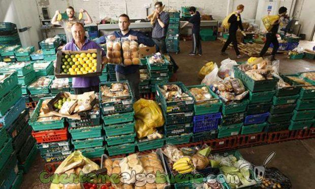 20161009-supermercado-comida-desechada-03