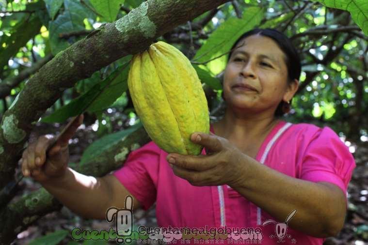 Soberanía Alimentaria: La voz de los pequeños productores