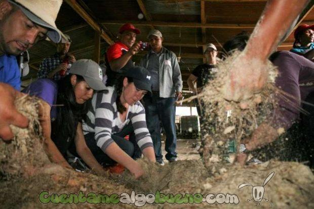 20161016-1-cafe-comercio-justo-honduras-02