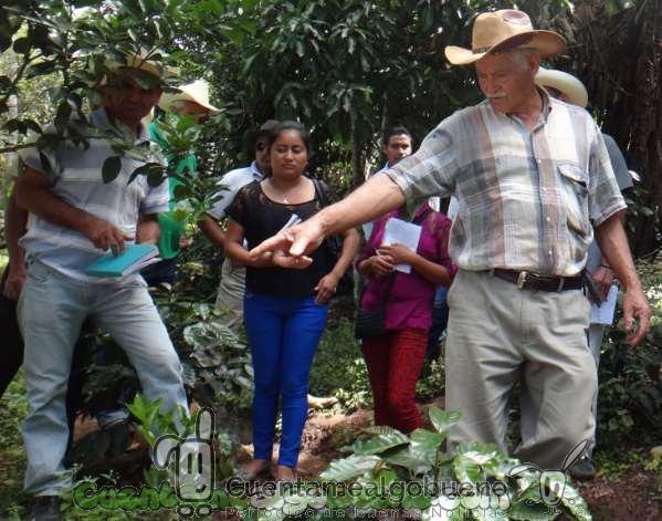 20161016-1-cafe-comercio-justo-honduras-04