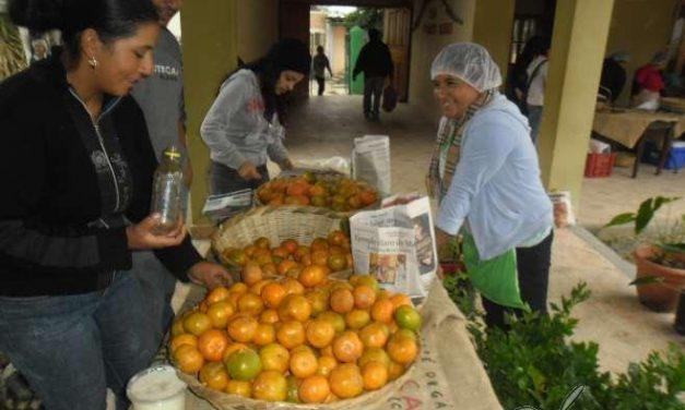 Promoción del consumo local de alimentos orgánicos y de variedades autóctonas en Honduras