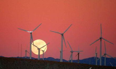 Alcanzado el punto de inflexión: las energías renovables son más baratas que el carbón, el gas o el petróleo