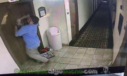 Salva la vida a un perro cuya correa quedó atrapada en el ascensor