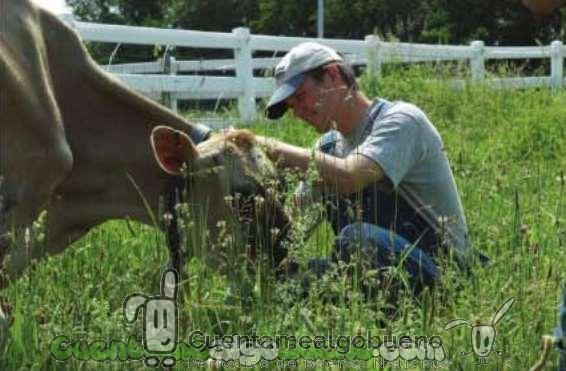 Otro granjero decide dejar de matar animales