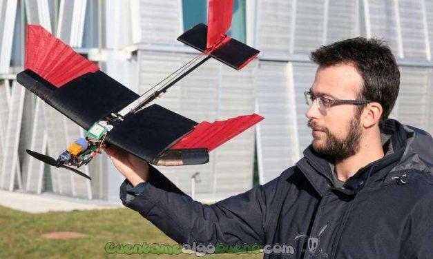 Dron alado imita el vuelo de las aves