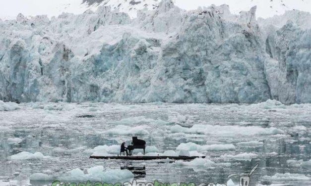 Éxito de la campaña #SalvaelÁrtico