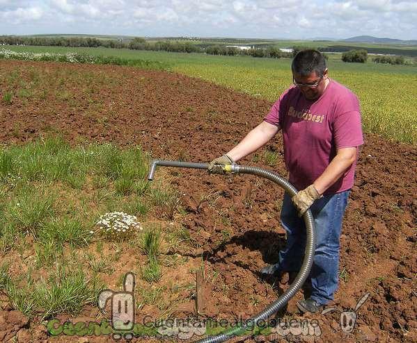 Mejorando la producción de maíz con lodos de depuradora