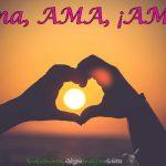 Ama, AMA, ¡AMA!