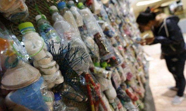 Desechos plásticos convertidos en arte