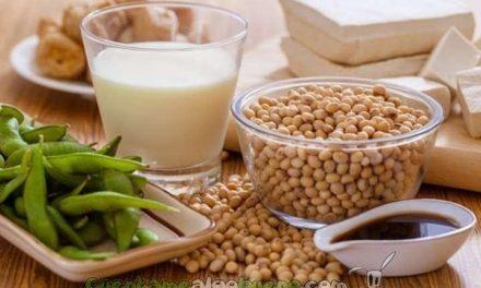 Beneficios de la soja frente al cáncer de mama