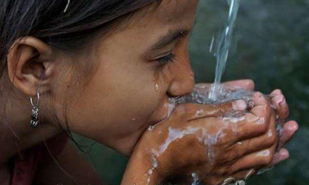 Hoy es el Día Mundial del Agua