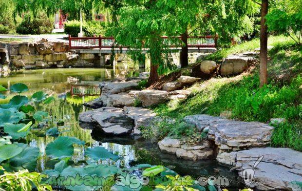 Jardín en la Ciudad Prohibida. Fotografía de Studio5Graphics.