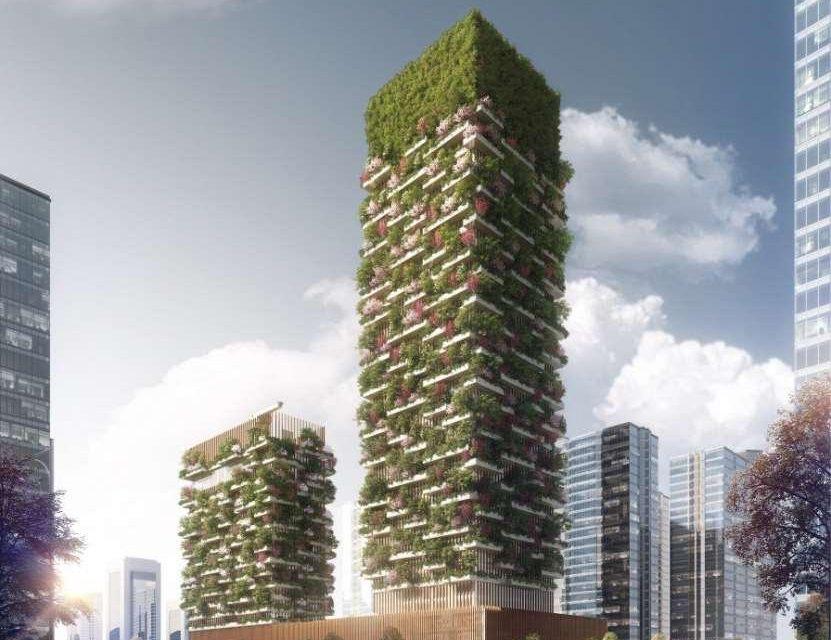 China quiere llenar de verde sus ciuidades