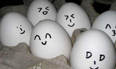 La tercera mayor cadena de supermercado italianos sólo venderá huevos de gallinas no enjauladas