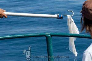 Podemos evitar que miles de bolsas de plástico acaben en los océanos. ¡Reutiliza! Fotografía de Garrett Coakley.