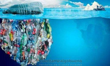Propuesta para implantar el retorno de envases en España