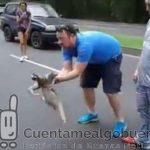 Ayudan a un perezoso a cruzar la carretera