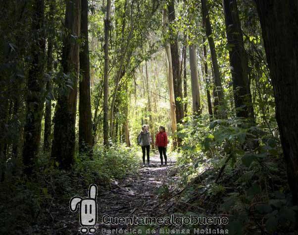 Concurso de fotografía para resaltar los valores del Camino de Santiago