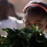 Día Mundial de la Alimentación: hacia la consecución de #HambreCero