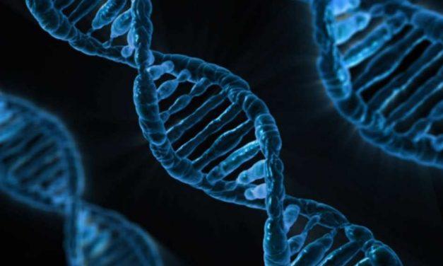Más cerca de poder curar las enfermedades genéticas