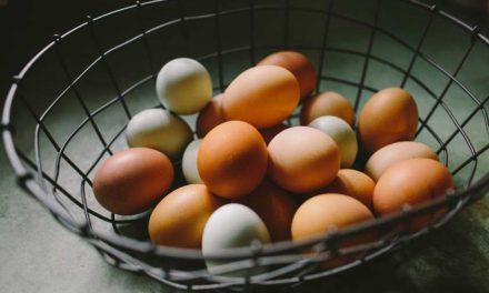 Montparnasse Pastelería (México) dejará de usar huevos de gallinas enjauladas