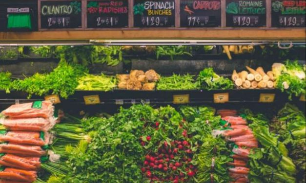 España entre los 6 países que más comida vegana demandan del mundo