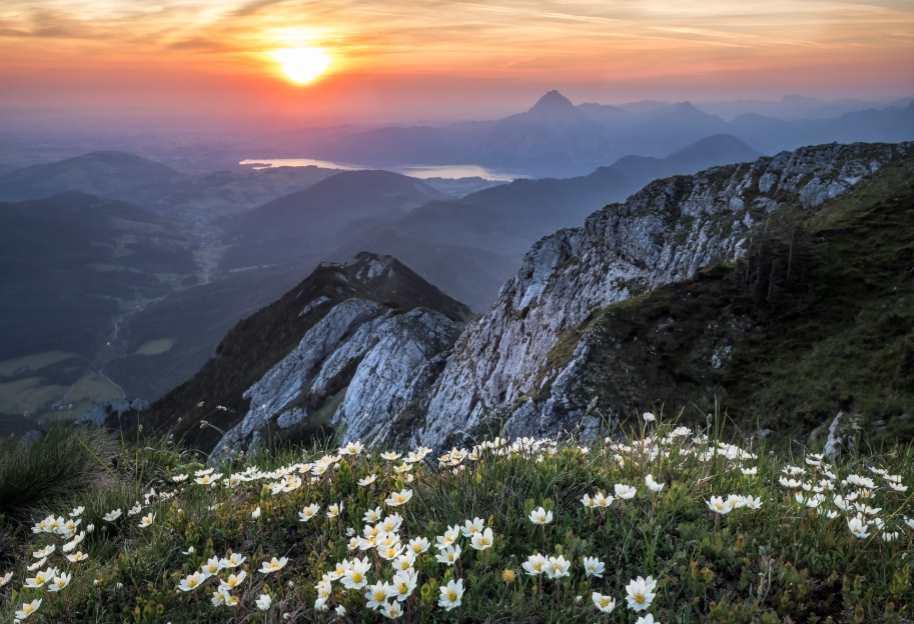 El Parlamento Europeo propone eliminar el impuesto al sol