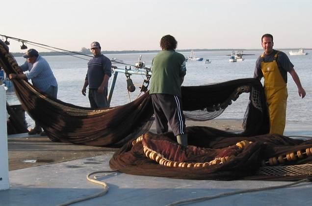 Cepesca formará a más de 100 trabajadores del sector pesquero español en recogida y gestión de basuras marinas y asesorará sobre proyectos sostenibles de diversificación de la actividad