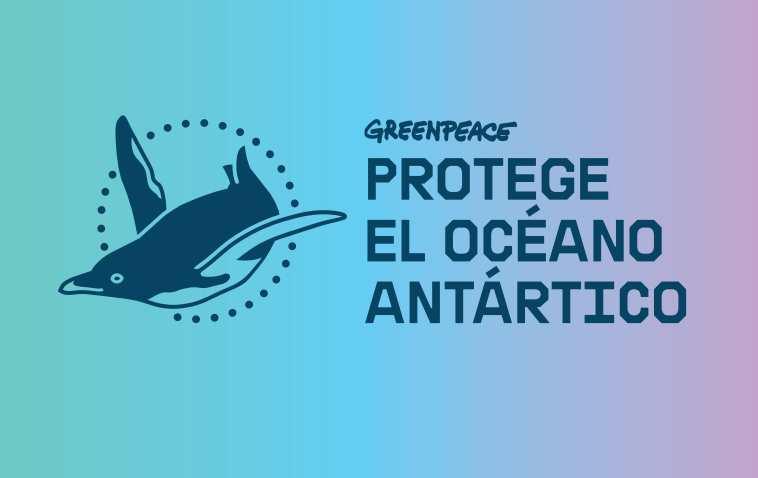 Greenpeace se ha comprometido a poner todos sus esfuerzos en proteger el océano Antártico
