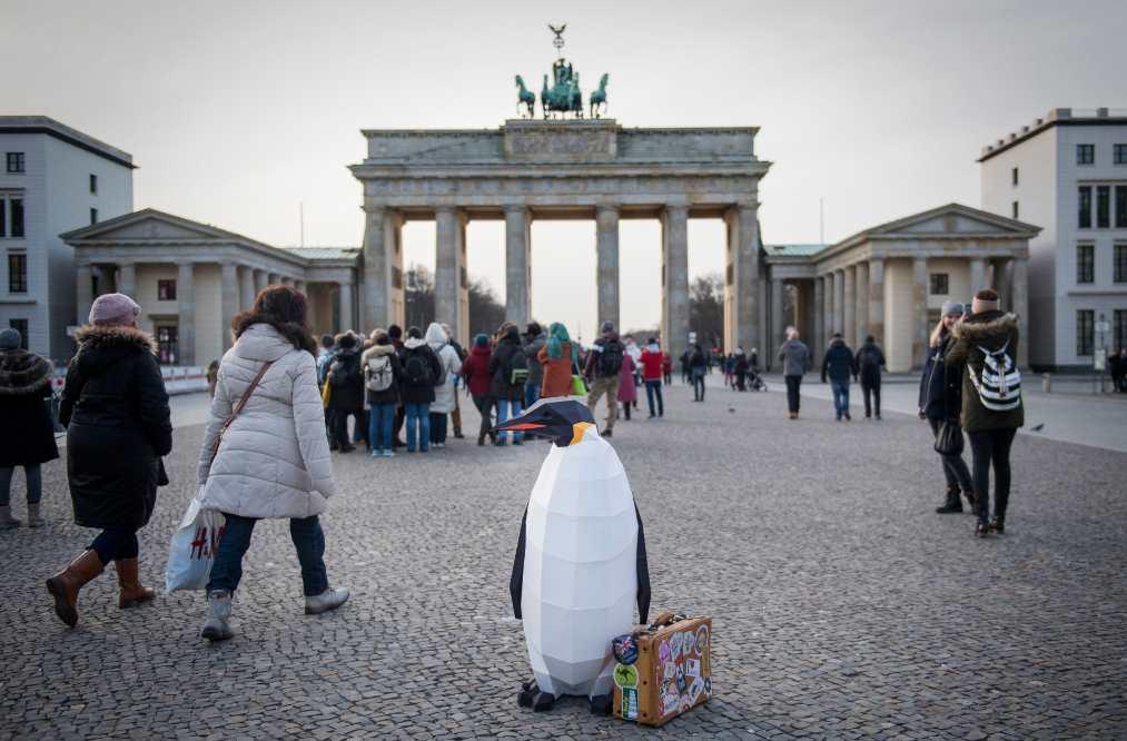 Pingüino marchando desde Berlin