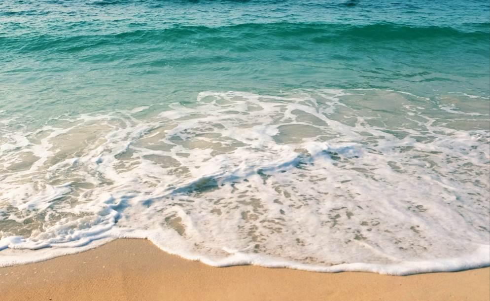 Esto es lo que queremos: mares, océanos y playas limpias de plásticos