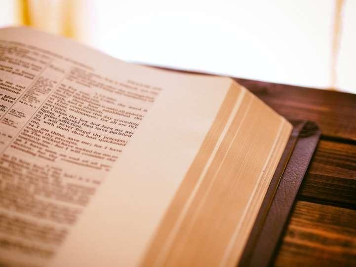 Sentencia pionera del Tribunal Constitucional a favor de la educación inclusiva de menores con discapacidad