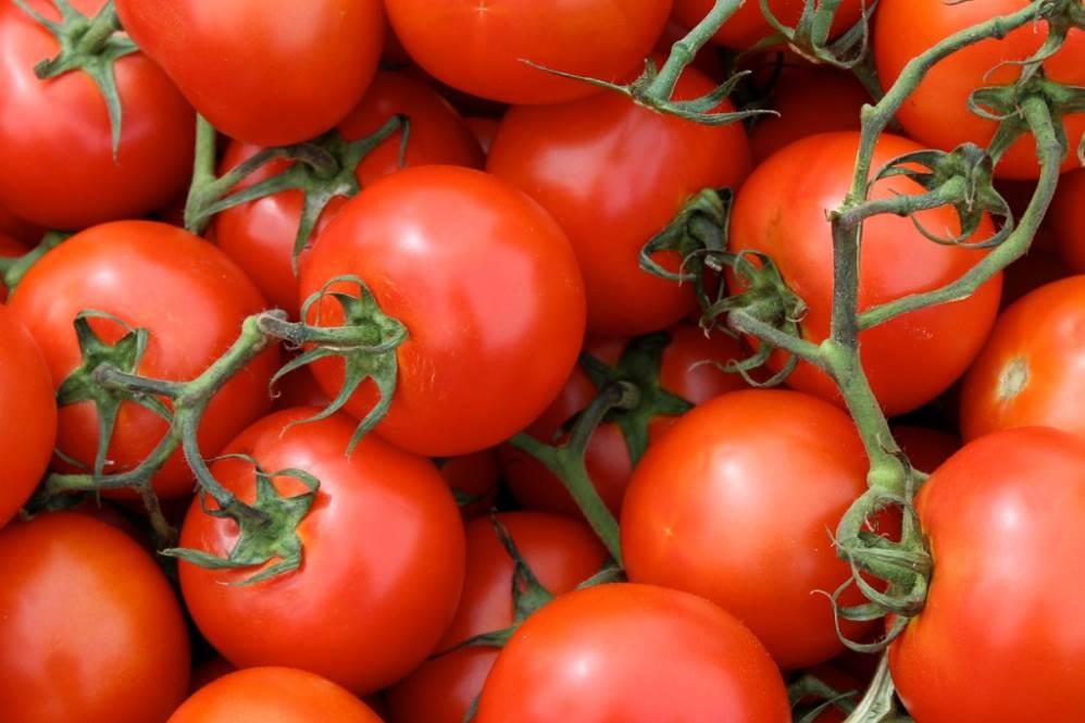 Los cinetíficos han conseguido sintetizar las propiedades físicas y químicas de la cutina, el poliéster que se obtiene de la piel de los tomates