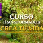 """Curso transformador """"Crea TU VIDA"""" este fin de semana en Málaga"""