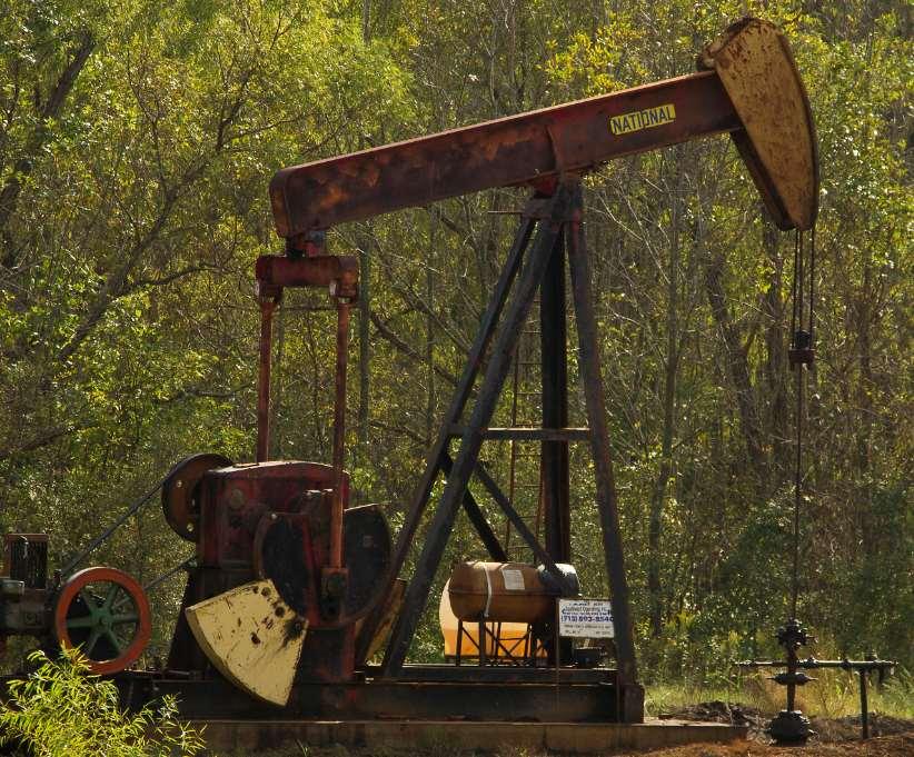 La demanda contra Shell forma parte de un movimiento mundial que busca exigir medidas a las multinacionales que promueven las energías sucias. Fotografía cortesía de Ray Bodden