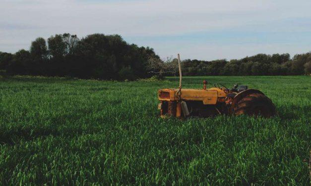 Crean una técnica para recuperar tierras contaminadas con los mismos microorganismos del suelo
