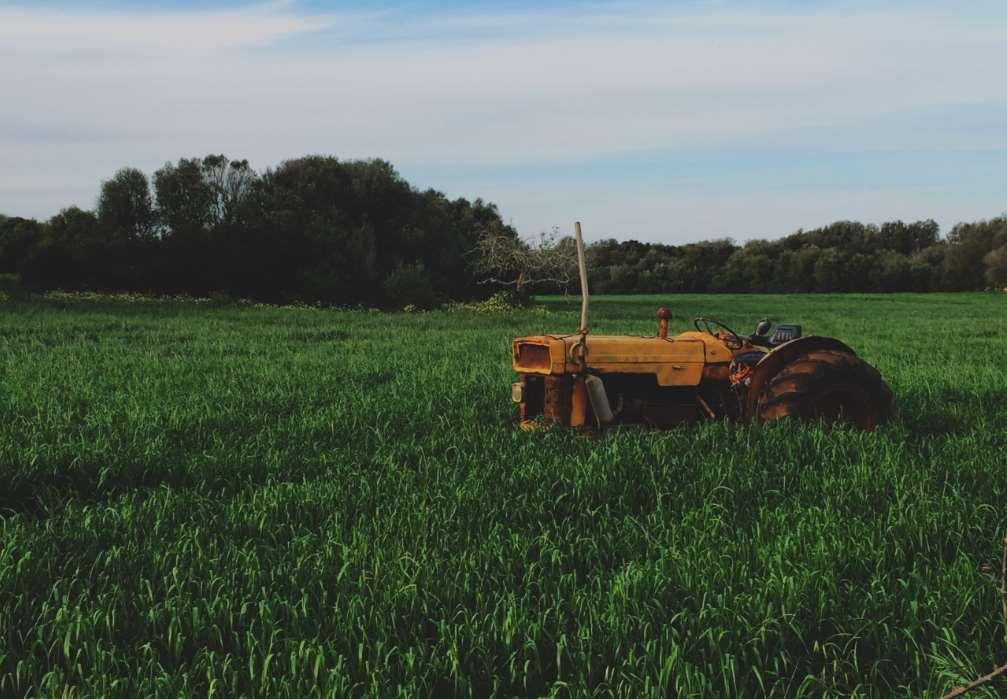 Los investigadores han observado la capacidad de eliminación del diurón utilizando distintas asociaciones de estas bacterias presentes en los mismos suelos de manera natural