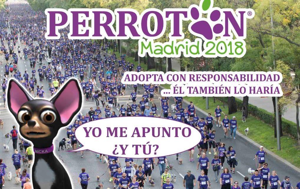 Abiertas las inscripciones para la Perrotón Madrid 2018