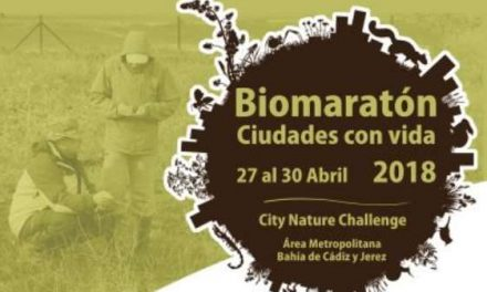 Biomaratón City Nature Challenge 2018 del 27 al 30 de abril en Cádiz