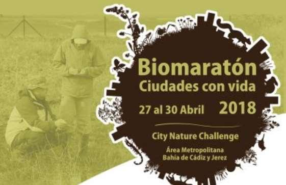 Biomaratón City Nature Challenge 2018 del 27 al 30 de abril en Cádiz