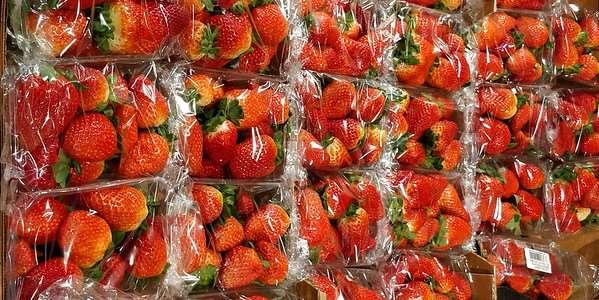 Más de un millón las personas piden a las empresas y supermercados que eliminen los plásticos de un sólo uso