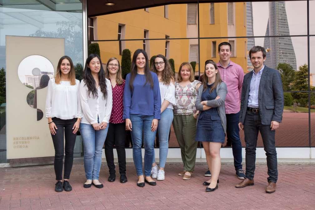 Grupo de Metástasis Cerebral del CNIO, liderado por Manuel Valiente (primero mirando la foto a la derecha) Foto: CNIO