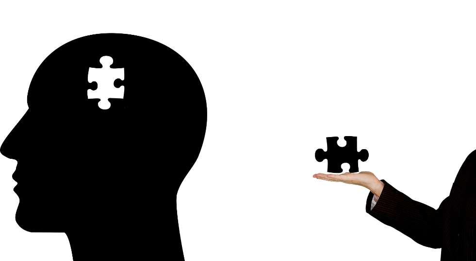 La hipótesis de los investigadores es que estas células necesitan un mecanismo de adaptación para colonizar el cerebro