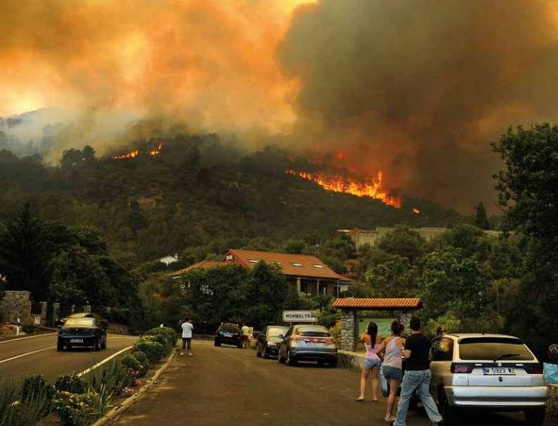 Los Scouts de España han querido sumarse a la campaña de Greenpeace de prevención de incendios forestales