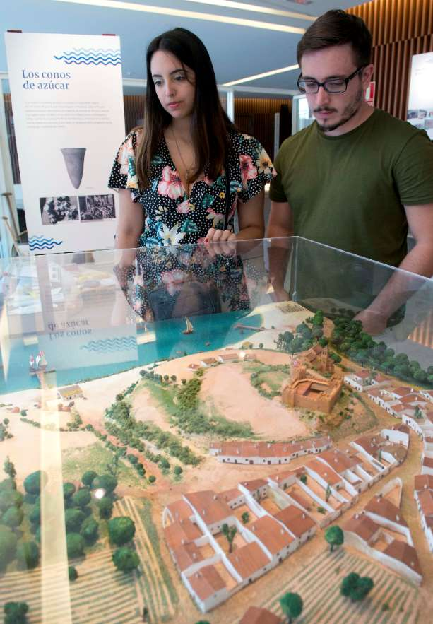 La Ventana a la Ciencia está impulsada por la Consejería de Conocimiento, Investigación y Universidad de la Junta de Andalucía, el Parque de las Ciencias y las universidades andaluzas