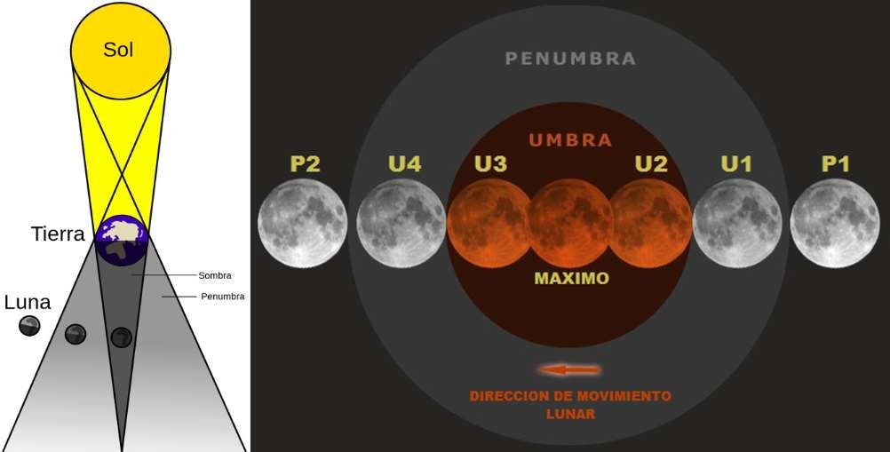 Diagrama de un eclipse lunar y nombres que reciben las etapas o contactos con la penunbra o umbra: P1 (primer contacto, comienzo del eclipse penumbral), U1 (segundo contacto, comienzo del eclipse parcial), U2 (tercer contacto, comienzo del eclipse total), máximo del eclipse (etapa de mayor ocultación), U3 (cuarto contacto, fin del eclipse total), U4 (quinto contacto, fin del eclipse parcial), P2 o P4 (sexto contacto, fin del eclipse penumbral). / Luca/Thóumas/ GIF:Tomruen (minutado en Tiempo Universal o UT. En la Península son dos horas más) Foto: Sinc